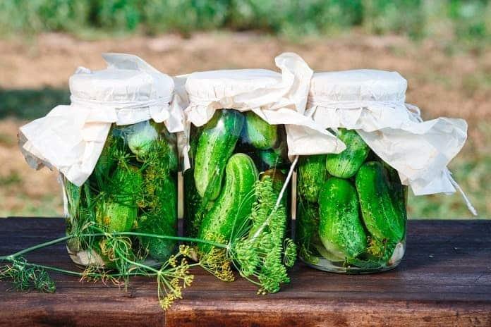 domáci nakladané uhorky